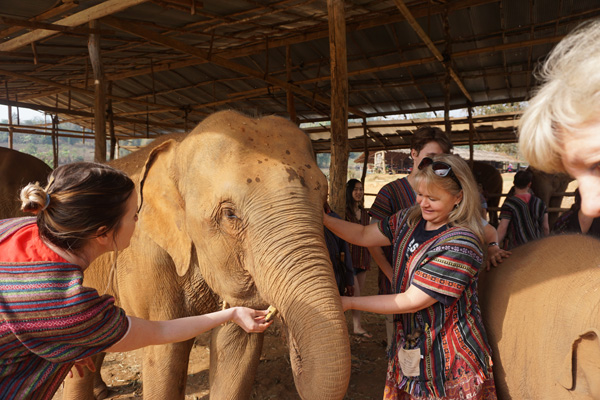 Cultural and historical training activity at an elephant sanctuary in Chiang Mai, Thailand